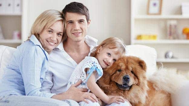 Wills & Trusts dog-young-family Direct Wills Rainham